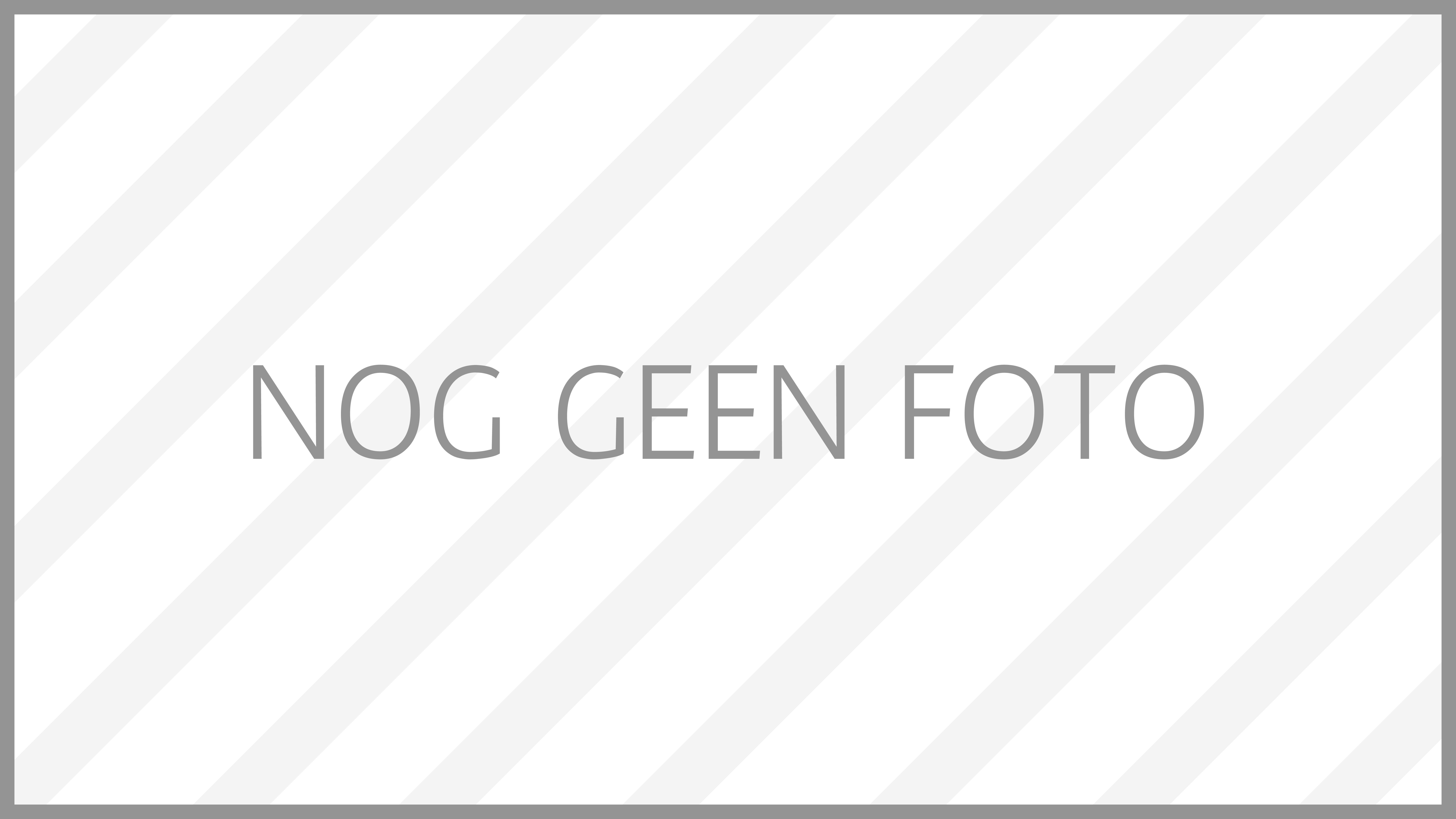 nog_geen_foto_grijs-01 Kleuren